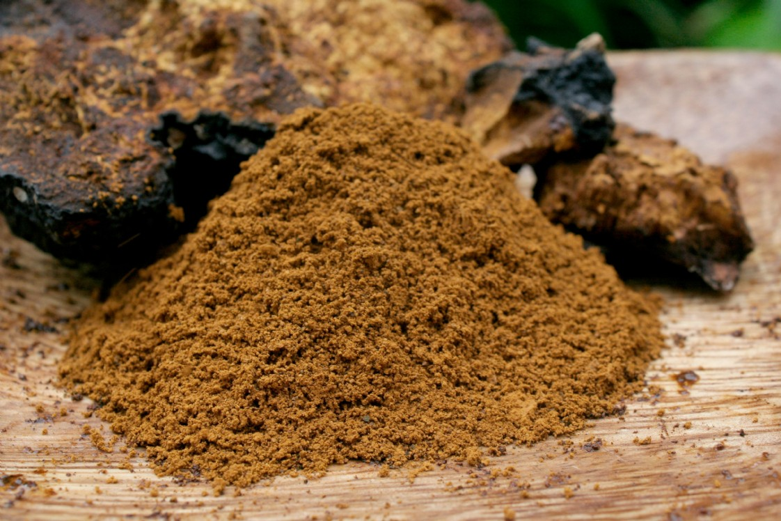 Image result for reishi mushroom powder