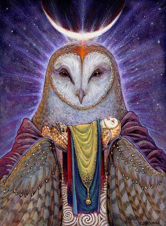 medicine owl