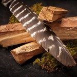 Benefits of Introducing Palo Santo, The Sacred Wood, Into Your Life